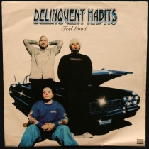 Delinquent Habits - Feel Good